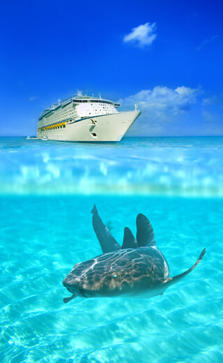Call 321-591-0854 - $8/Day Port Canaveral Cruise Parking located at 350 Fortenberry Rd. 24/7 Secured Port Canaveral Cruise Parking Lot w/ Free Shuttle